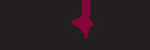 Pink Sky Studios Retina Logo